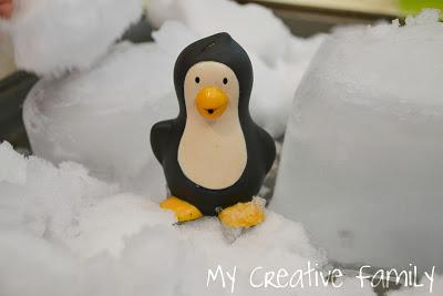 Antarctica Fun