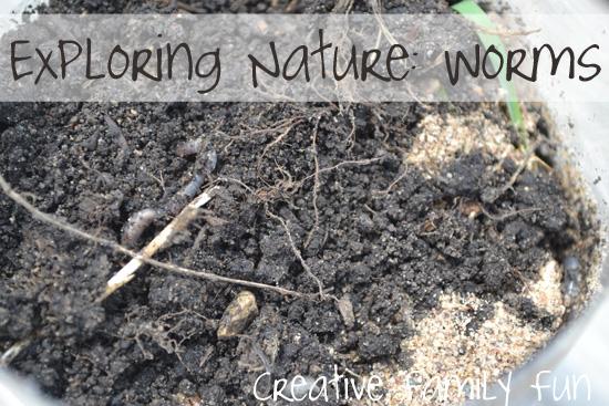 Exploring Nature: Worms