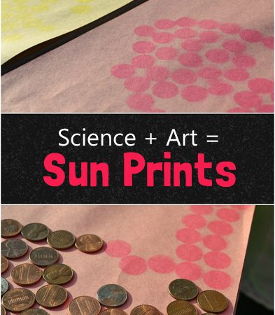 Art + Science: Sun Prints
