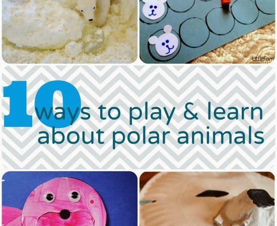 10 Ways to Play and Learn About Polar Animals