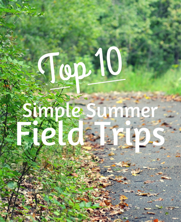 Top 10 Simple Summer Field Trips