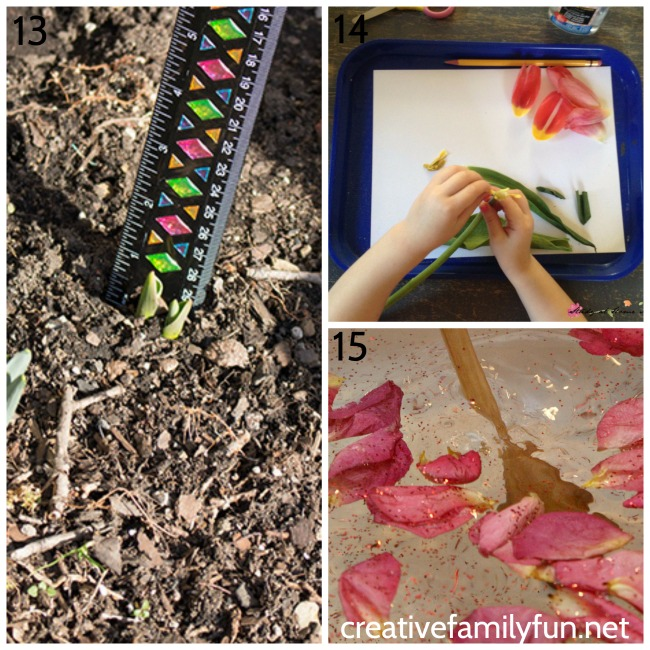 Get outside and learn while you explore nature in spring. Discover flowers, gardens, seeds, birds, animals, and plant science.
