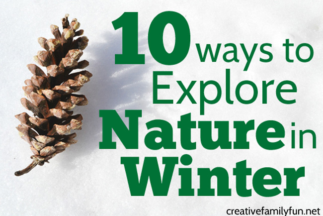 Even with the world is covered with snow, there are many fun ways to explore nature in winter with kids. Bundle up, go outside, and learn about snow, ice, and other things that are unique to winter.