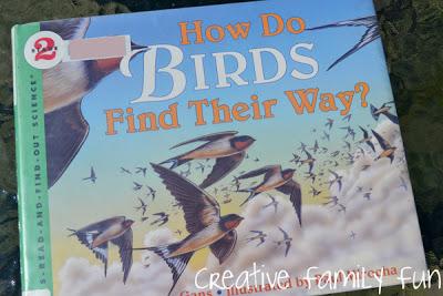 How Do Birds Find Their Way? Book & Activity