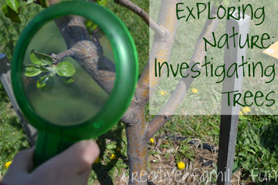 Exploring Nature: Investigating Trees