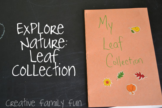 Explore Nature: Leaf Collections