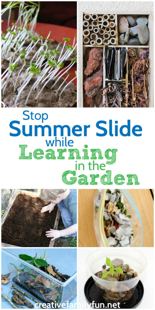 Stop summer slide with some fun and educational learning activities you can do in the garden. Grow seeds, observe bugs, and do more science in the garden.