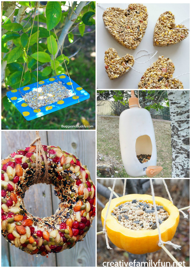 Invite the birds to your yard with one of these kid-made bird feeders. DIY bird feeders are a great family craft and a fun way to learn about nature.
