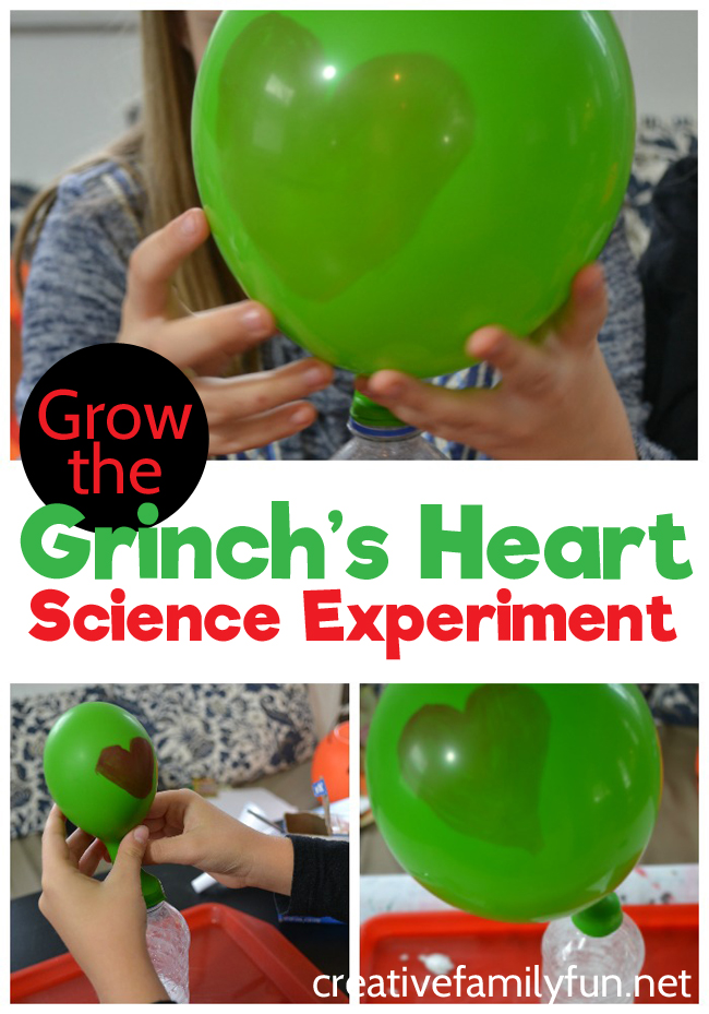 Try some Christmas science with this fun Grow the Grinch's heart science experiment. It's a STEM activity with a Christmas twist.