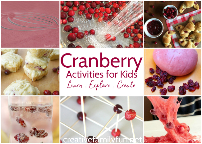 Play, explore, and learn with these fun Cranberry Activities for Kids. You'll find fun sensory ideas, learning activities, and yummy recipes.
