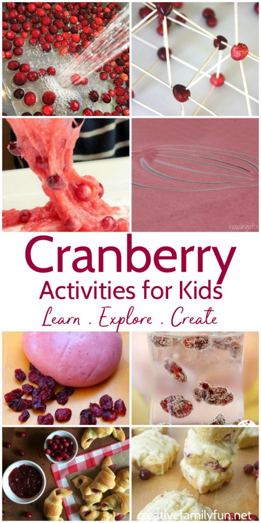 Play, explore, and learn with these fun Cranberry Activities for Kids. You'll find fun sensory ideas, learning activities, and yummy recipes. #Thanksgiving #kidsactivities #CreativeFamilyFun