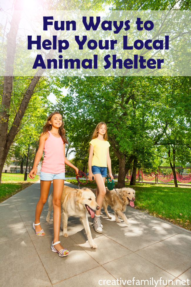 Volunteer together as a family with ones of these fun ways to help your local animal shelter. There's a wide range of ideas that will suit families with all ages of kids.