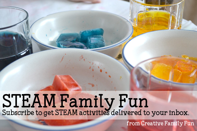 STEAM Family Fun Email List Sign Up
