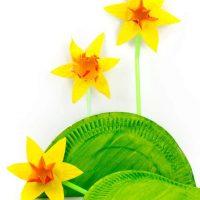 Pop Up Daffodils
