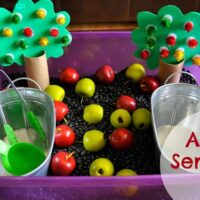 Apple Orchard Sensory Bin