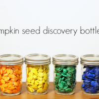 How to Dye Pumpkin Seeds for Discovery Bottles, Art, Literacy, and More
