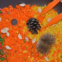 Autumn Rice Tray for Fine Motor Skills