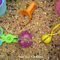 Bird Seed Sensory Play with Toddlers