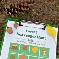 Forest Scavenger Hunt