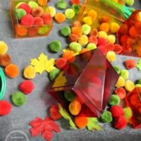 Color Sorting Fall Sensory Bin for Preschoolers