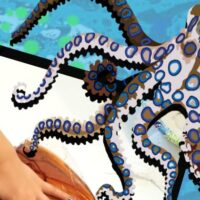 Octopus Science Experiments for Preschoolers