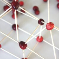 Thanksgiving STEM Building Cranberry Structures