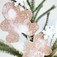 Gingerbread Man Salt Crystals Science Activity